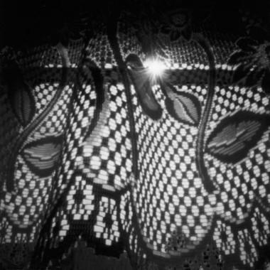 Veil, 2006